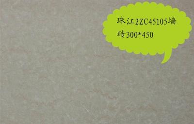 珠江2ZC45105墙zhuan
